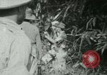 Image of Office of Strategic Services Burma, 1943, second 16 stock footage video 65675021891