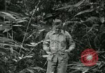 Image of Office of Strategic Services Burma, 1943, second 52 stock footage video 65675021891