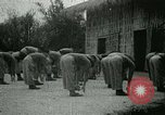 Image of Office of Strategic Services Burma, 1943, second 18 stock footage video 65675021894