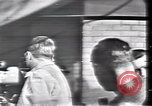 Image of Lee Harvey Oswald Dallas Texas USA, 1963, second 53 stock footage video 65675021908