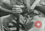 Image of Hitler Youth Germany, 1940, second 17 stock footage video 65675021926