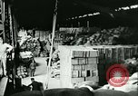 Image of food supplies France, 1940, second 42 stock footage video 65675021931