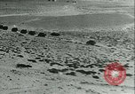 Image of Italian military forces in North Africa Libya, 1940, second 41 stock footage video 65675021933
