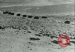 Image of Italian military forces in North Africa Libya, 1940, second 42 stock footage video 65675021933
