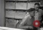 Image of hurricane hunting United States USA, 1955, second 16 stock footage video 65675022101
