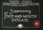 Image of foot and mouth disease United States USA, 1925, second 16 stock footage video 65675022110