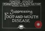 Image of foot and mouth disease United States USA, 1925, second 19 stock footage video 65675022110