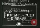 Image of foot and mouth disease United States USA, 1925, second 21 stock footage video 65675022110