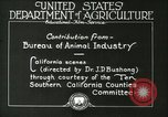 Image of foot and mouth disease United States USA, 1925, second 29 stock footage video 65675022110