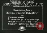Image of foot and mouth disease United States USA, 1925, second 37 stock footage video 65675022110
