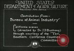 Image of foot and mouth disease United States USA, 1925, second 39 stock footage video 65675022110