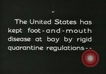 Image of foot and mouth disease United States USA, 1925, second 4 stock footage video 65675022111