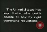 Image of foot and mouth disease United States USA, 1925, second 9 stock footage video 65675022111