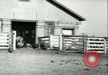 Image of foot and mouth disease United States USA, 1925, second 47 stock footage video 65675022114