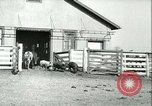 Image of foot and mouth disease United States USA, 1925, second 49 stock footage video 65675022114