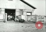 Image of foot and mouth disease United States USA, 1925, second 50 stock footage video 65675022114