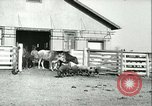 Image of foot and mouth disease United States USA, 1925, second 52 stock footage video 65675022114