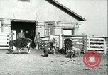 Image of foot and mouth disease United States USA, 1925, second 55 stock footage video 65675022114