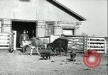 Image of foot and mouth disease United States USA, 1925, second 57 stock footage video 65675022114
