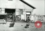 Image of foot and mouth disease United States USA, 1925, second 61 stock footage video 65675022114