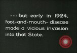 Image of foot and mouth disease California United States USA, 1925, second 10 stock footage video 65675022115