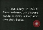 Image of foot and mouth disease California United States USA, 1925, second 14 stock footage video 65675022115