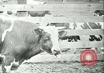 Image of foot and mouth disease California United States USA, 1925, second 32 stock footage video 65675022115