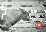 Image of foot and mouth disease California United States USA, 1925, second 37 stock footage video 65675022115