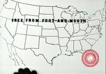 Image of foot and mouth disease United States USA, 1925, second 17 stock footage video 65675022117