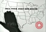 Image of foot and mouth disease United States USA, 1925, second 20 stock footage video 65675022117
