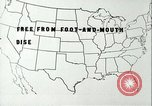 Image of foot and mouth disease United States USA, 1925, second 21 stock footage video 65675022117