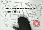 Image of foot and mouth disease United States USA, 1925, second 28 stock footage video 65675022117