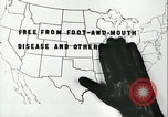 Image of foot and mouth disease United States USA, 1925, second 32 stock footage video 65675022117
