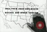 Image of foot and mouth disease United States USA, 1925, second 34 stock footage video 65675022117