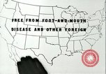 Image of foot and mouth disease United States USA, 1925, second 35 stock footage video 65675022117