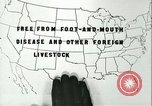 Image of foot and mouth disease United States USA, 1925, second 40 stock footage video 65675022117