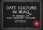 Image of Date Culture in Iraq Mesopotamia Iraq, 1929, second 15 stock footage video 65675022173