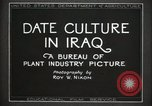 Image of Date Culture in Iraq Mesopotamia Iraq, 1929, second 16 stock footage video 65675022173