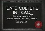 Image of Date Culture in Iraq Mesopotamia Iraq, 1929, second 17 stock footage video 65675022173