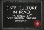 Image of Date Culture in Iraq Mesopotamia Iraq, 1929, second 18 stock footage video 65675022173