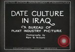 Image of Date Culture in Iraq Mesopotamia Iraq, 1929, second 20 stock footage video 65675022173