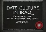 Image of Date Culture in Iraq Mesopotamia Iraq, 1929, second 23 stock footage video 65675022173