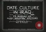 Image of Date Culture in Iraq Mesopotamia Iraq, 1929, second 25 stock footage video 65675022173