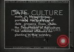 Image of Date Culture in Iraq Mesopotamia Iraq, 1929, second 26 stock footage video 65675022173