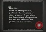 Image of Date Culture in Iraq Mesopotamia Iraq, 1929, second 36 stock footage video 65675022173
