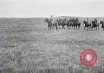 Image of Negro soldiers of 369th Infantry Regiment Maffrecourt France, 1918, second 1 stock footage video 65675022199