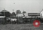 Image of Cotton ginning New Orleans Louisiana USA, 1919, second 14 stock footage video 65675022211