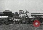 Image of Cotton ginning New Orleans Louisiana USA, 1919, second 15 stock footage video 65675022211