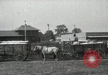 Image of Cotton ginning New Orleans Louisiana USA, 1919, second 16 stock footage video 65675022211