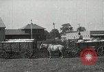 Image of Cotton ginning New Orleans Louisiana USA, 1919, second 17 stock footage video 65675022211